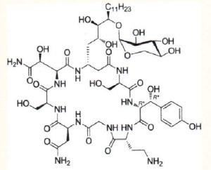 Example of a Burkholdine Molecule